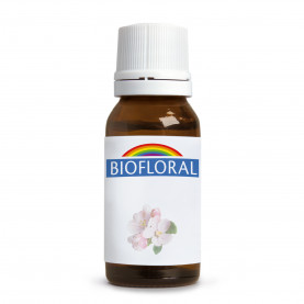 Gentian - Genciana - 9 g   Biofloral