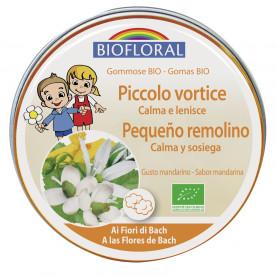Pastillas de goma - Pequeño remolino - 45 g | Biofloral