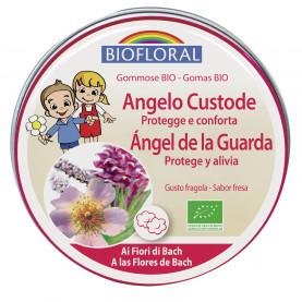 Pastillas de goma - Ángel de la Guarda - 45 g   Biofloral